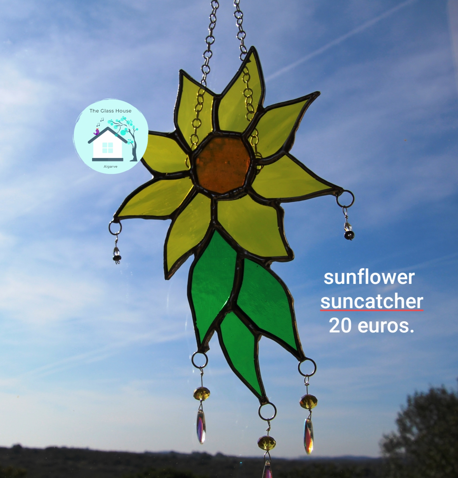 Sunflower 15/17cm