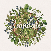 Raindale logo (1024).png