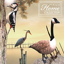 TLC Home Collection Logo_1024x1024_jpg.png