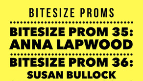 Bitesize Proms