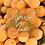 Thumbnail: Apricot Jam Wax Brittle