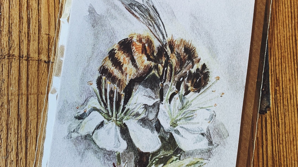 Hawthorn Blossom and Honey Bee Notecard