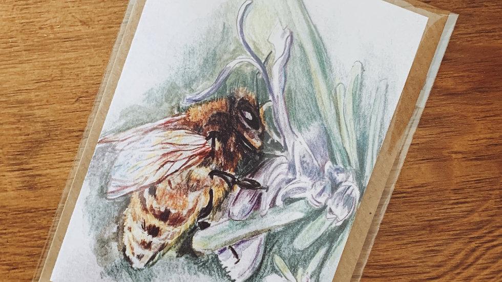 Rosemary and Honey Bee Notecard