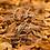 Thumbnail: Cuban Oak