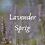 Thumbnail: Lavender Sprig Scented Salt