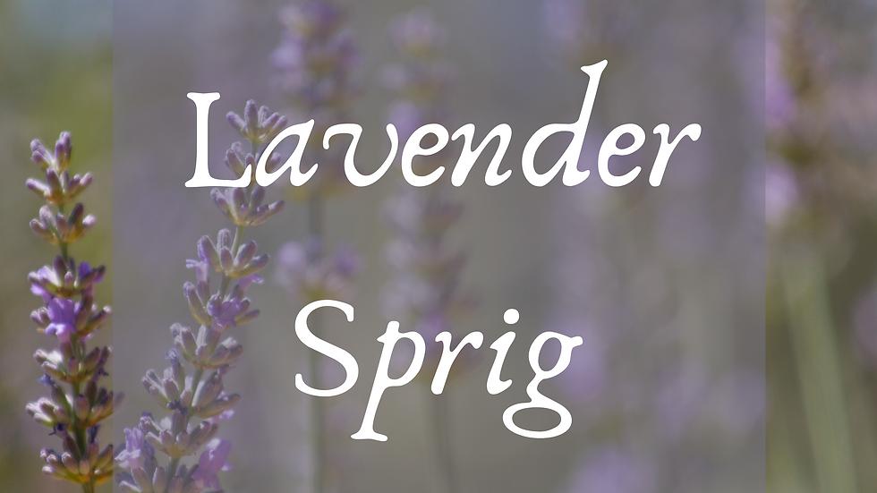 Lavender Sprig Scented Salt