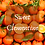 Thumbnail: Sweet Clementine Scented Salt