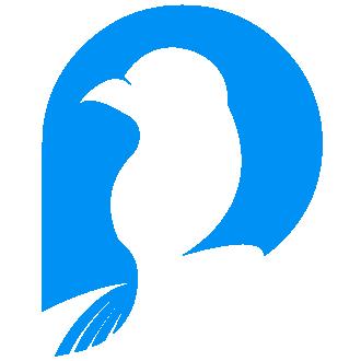 BirdPay---Logo.png