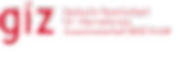giz-standard-logo.png