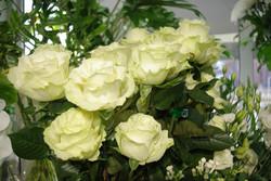 Rose Blanche - Mondiale