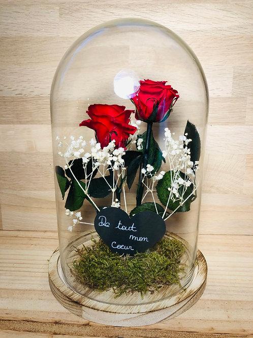 Rose eternelle #2