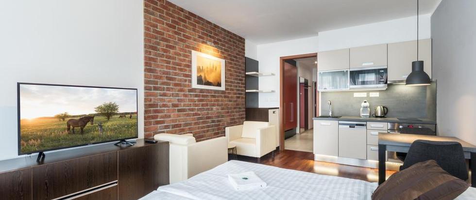 Albertov Rental Apartments (5).jpg