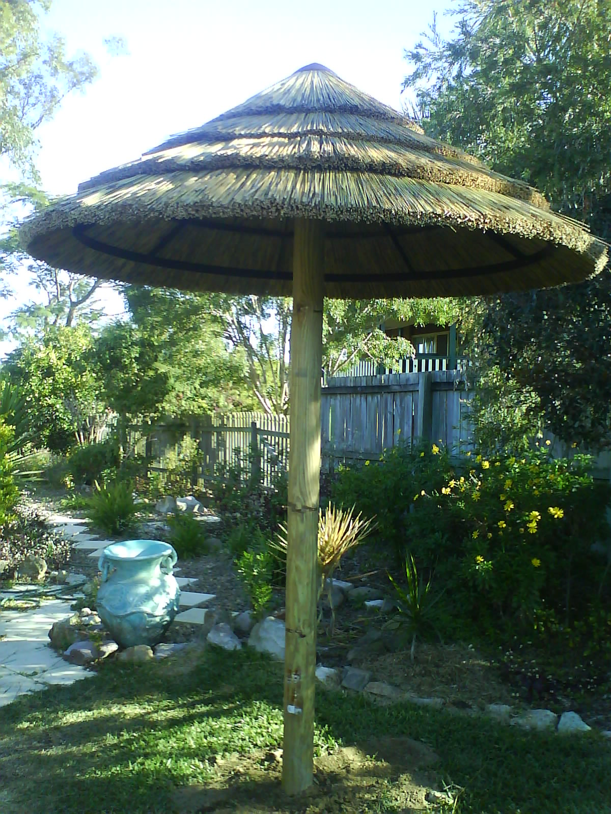 African Cape Reed Umbrella