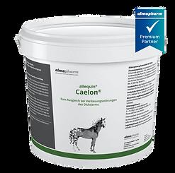 Caelon telVet Online Tierarzt Pferd