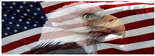 American-Flag-Faded-Eagle.jpg