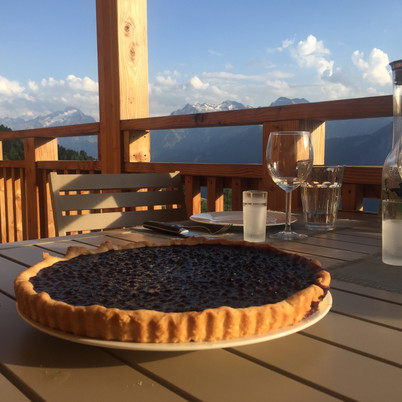 Myrtilles / Blueberries