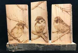 3 Tenors - Sparrows