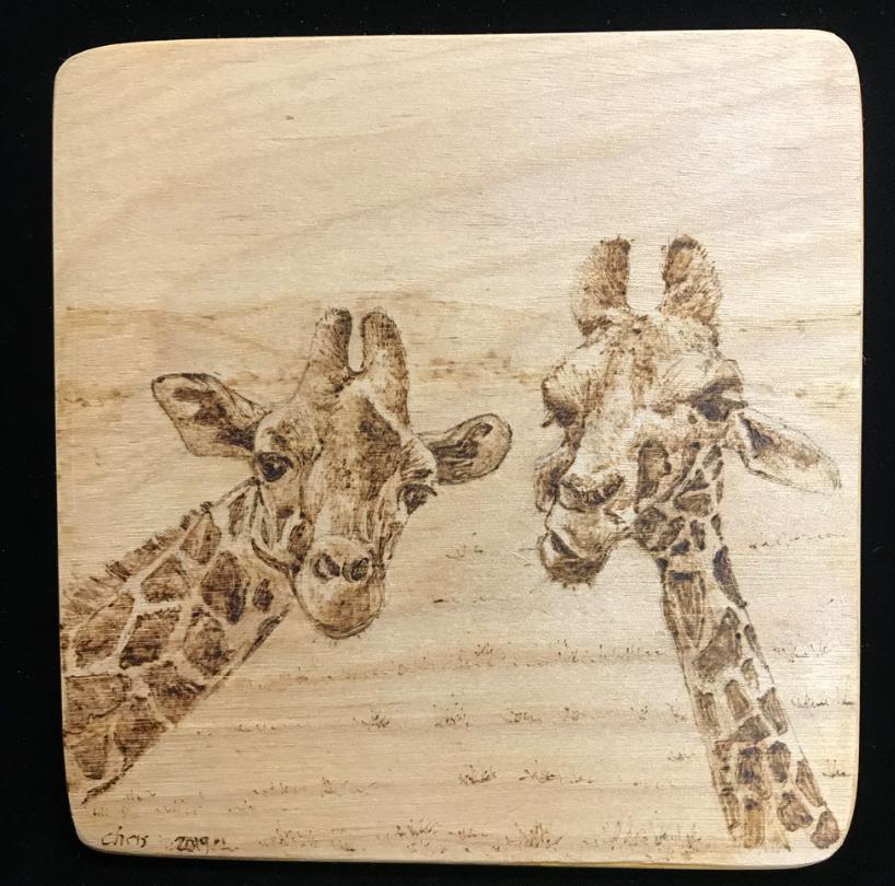 2 Giraffs Gossiping