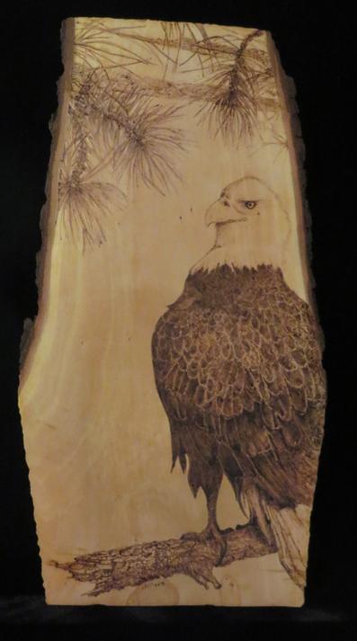 Always Vigilant - Bald Eagle