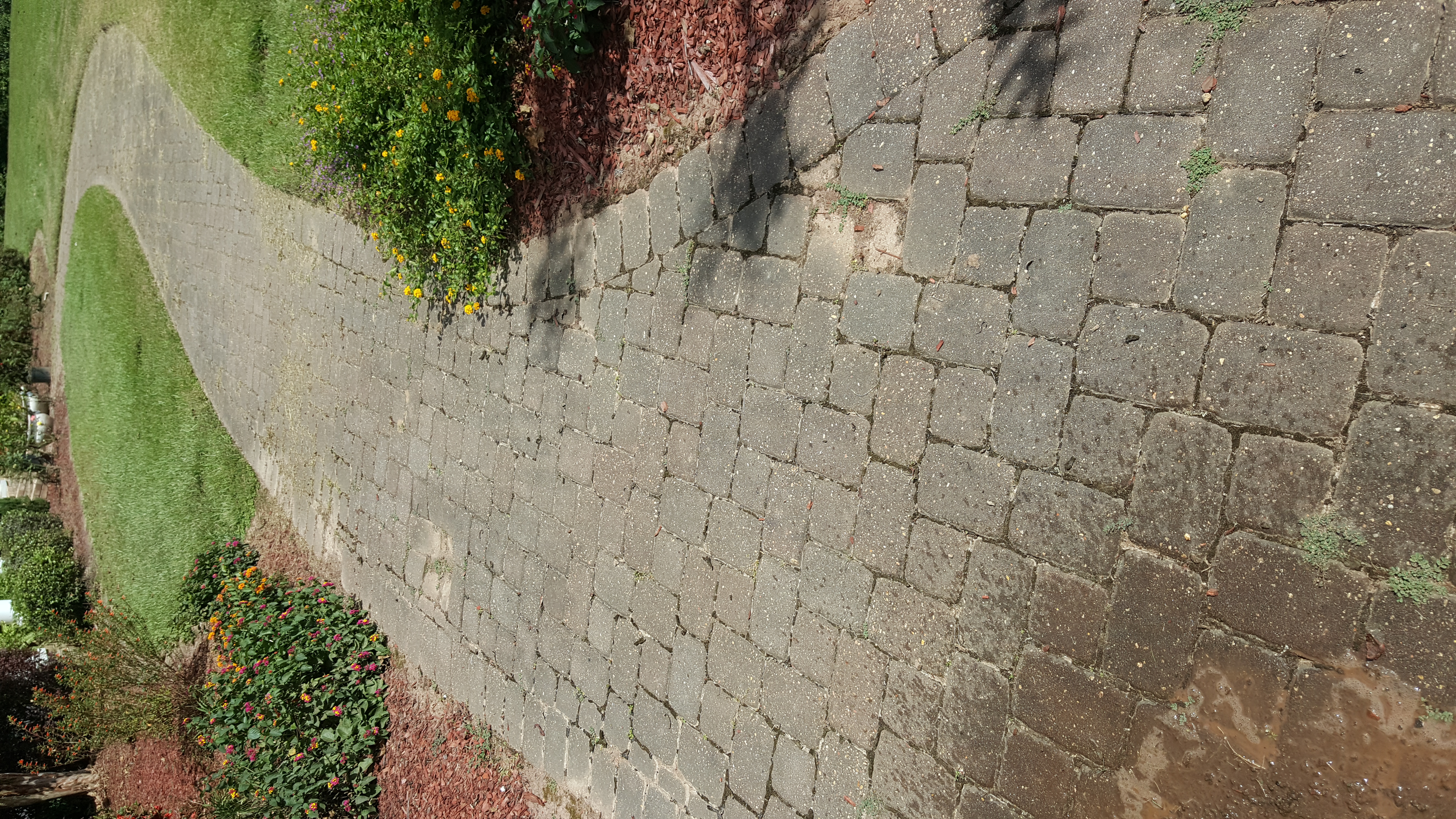Before walkway wash