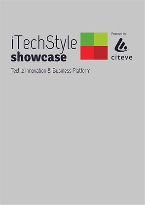 logo ITECHSTYLE.jpg