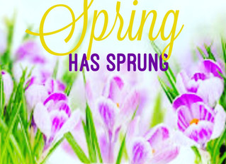 SPRING HAS SPRUNG | It's the season of new beginnings and optimism...