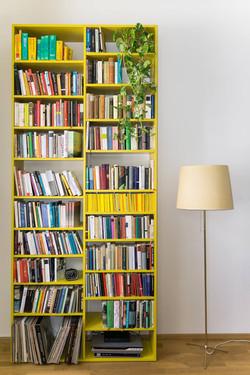 Twin bookcases, Vienna 1150