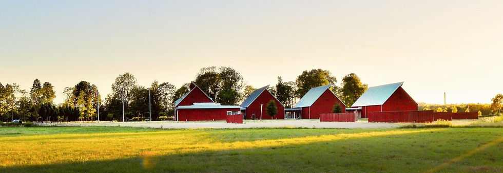 barn-cropland-dawn-1198507_edited_edited.jpg
