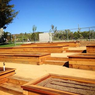 Designing new school gardens