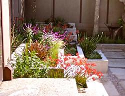 Modern courtyard - Hollywood, CA