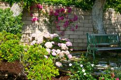 Estate garden - Northridge, CA
