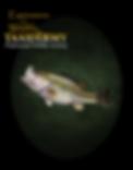 Bass 12 AARON.png