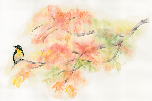 Bird on a fall branch