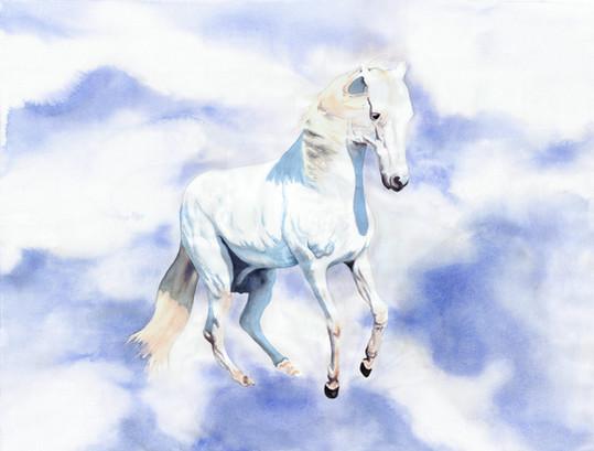 White Horse of Revelation