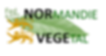 logoSFR4277_couleur_horizontal_fond clai