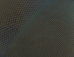 insect eye useful.png