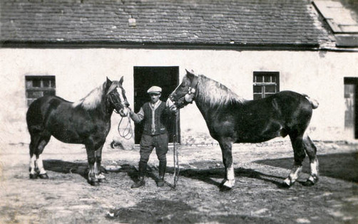 Father's stables