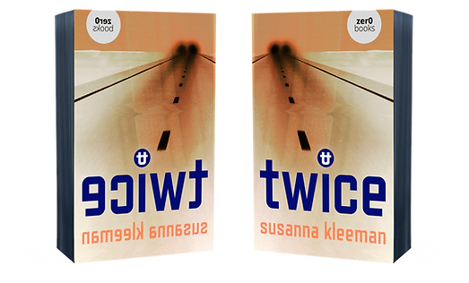 nice 3D book cover doubled inverted.png