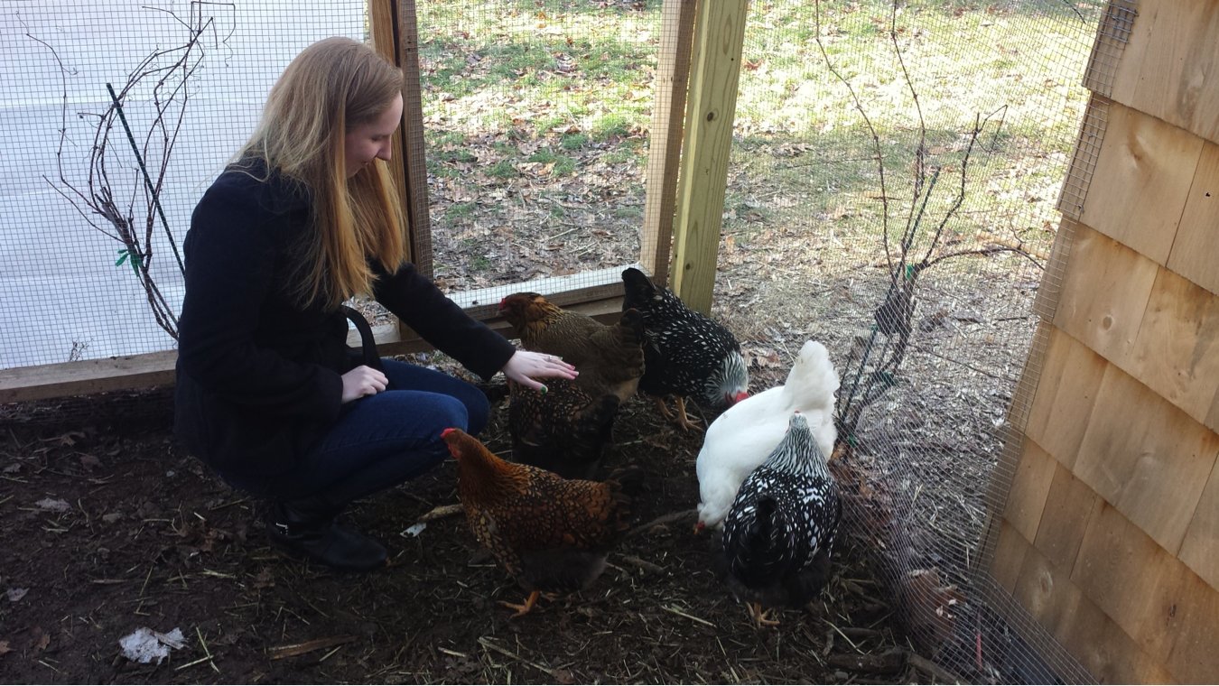 Lauren and Chickens