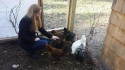 Lauren and Chickens