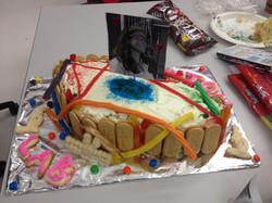 PeytonLab Cake