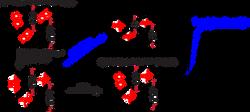 New dynamic gels