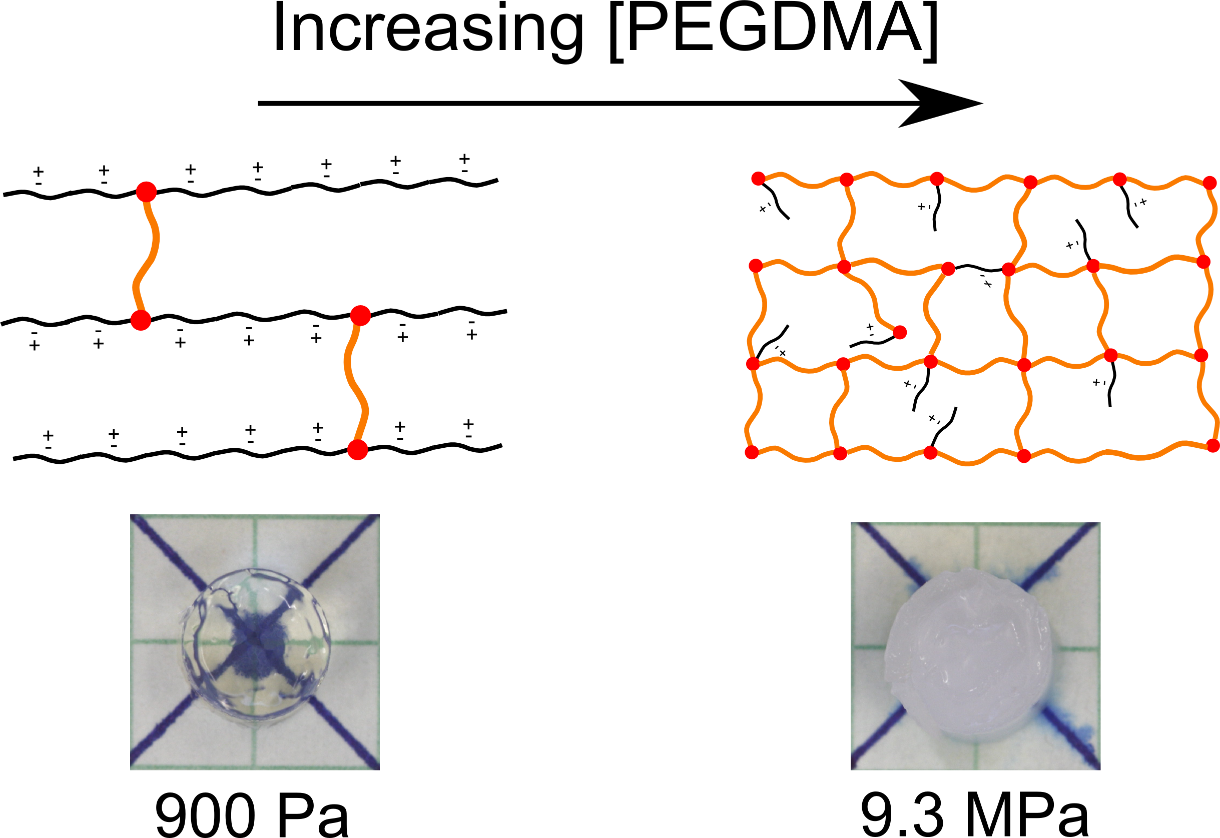Hydrophilic Zwitterionic Gels