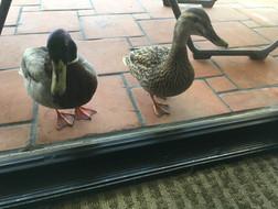 Friendly Hotel Staff
