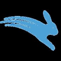 Logo_Rabbit_1000X1000_trans_NOTM.png