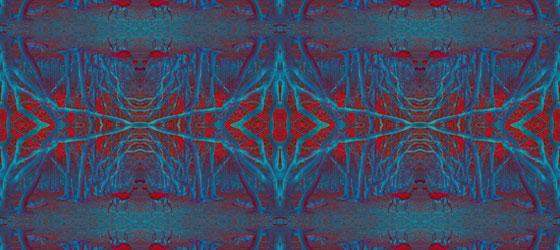 Deers-Web-02-04