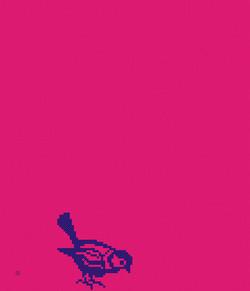 1x_Kreuzstich_Vogel_Taipeh_240x280cm_pink