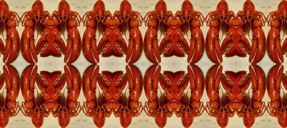 Lobster-02-08