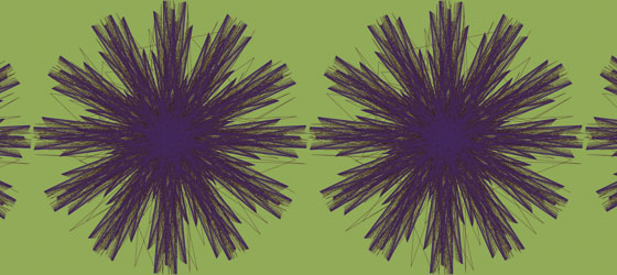 Centaurea-01-18