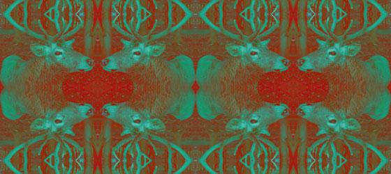 Deers-Web-01-06